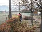Esat les ateliers du plantau horticulture p pini riste for Association entretien espaces verts
